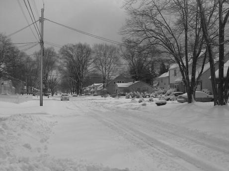 My street the day after a snowstorm in February 2010.
